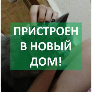 Рисунок1.jpg